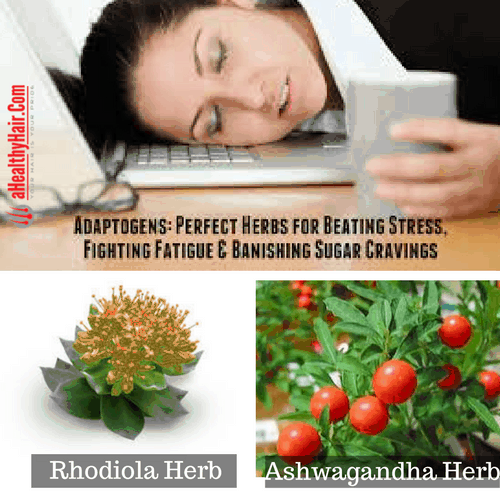 adaptogenic-herbs